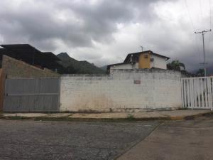Terreno En Venta En Maracay - El Limon Código FLEX: 19-17811 No.1