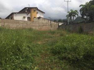 Terreno En Venta En Maracay - El Limon Código FLEX: 19-17811 No.4