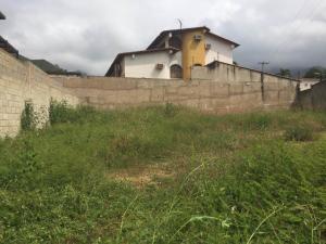 Terreno En Venta En Maracay - El Limon Código FLEX: 19-17811 No.5