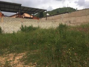 Terreno En Venta En Maracay - El Limon Código FLEX: 19-17811 No.6