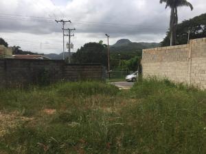 Terreno En Venta En Maracay - El Limon Código FLEX: 19-17811 No.7