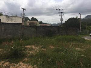 Terreno En Venta En Maracay - El Limon Código FLEX: 19-17811 No.9