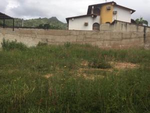 Terreno En Venta En Maracay - El Limon Código FLEX: 19-17811 No.10