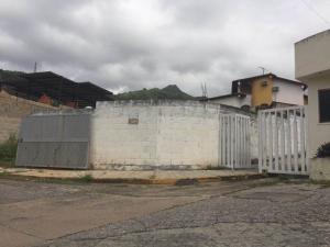 Terreno En Venta En Maracay - El Limon Código FLEX: 19-17811 No.12