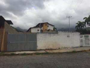 Terreno En Venta En Maracay - El Limon Código FLEX: 19-17811 No.13
