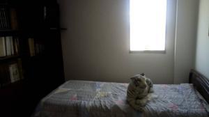 Apartamento En Venta En Caracas - Colinas de Santa Monica Código FLEX: 20-6960 No.9
