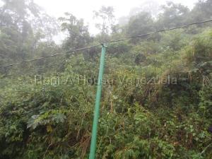 Terreno En Venta En Caracas - El Hatillo Código FLEX: 20-7867 No.3