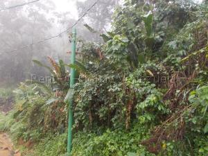 Terreno En Venta En Caracas - El Hatillo Código FLEX: 20-7867 No.6