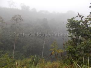 Terreno En Venta En Caracas - El Hatillo Código FLEX: 20-7867 No.7