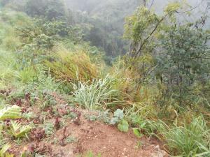 Terreno En Venta En Caracas - El Hatillo Código FLEX: 20-7867 No.9