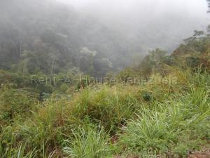 Terreno En Venta En Caracas - El Hatillo Código FLEX: 20-7867 No.11