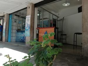 Local Comercial En Alquiler En Caracas - Las Palmas Código FLEX: 20-10491 No.1