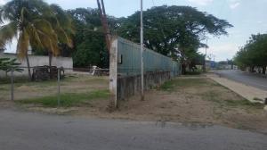 Terreno en Venta en Avenida Aragua