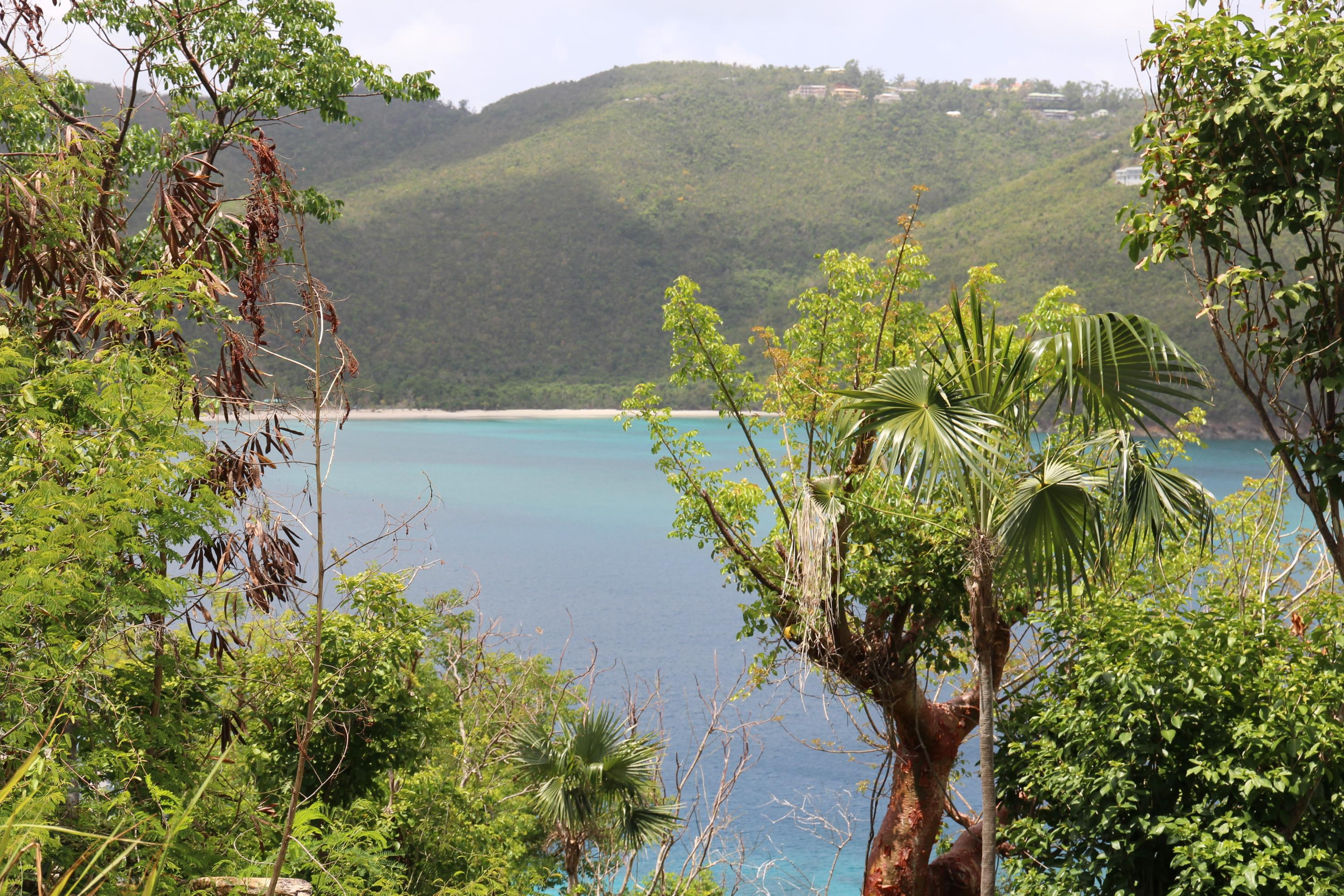 Land for Sale at 10-1-8 Peterborg GNS 10-1-8 Peterborg GNS St Thomas, Virgin Islands 00802 United States Virgin Islands