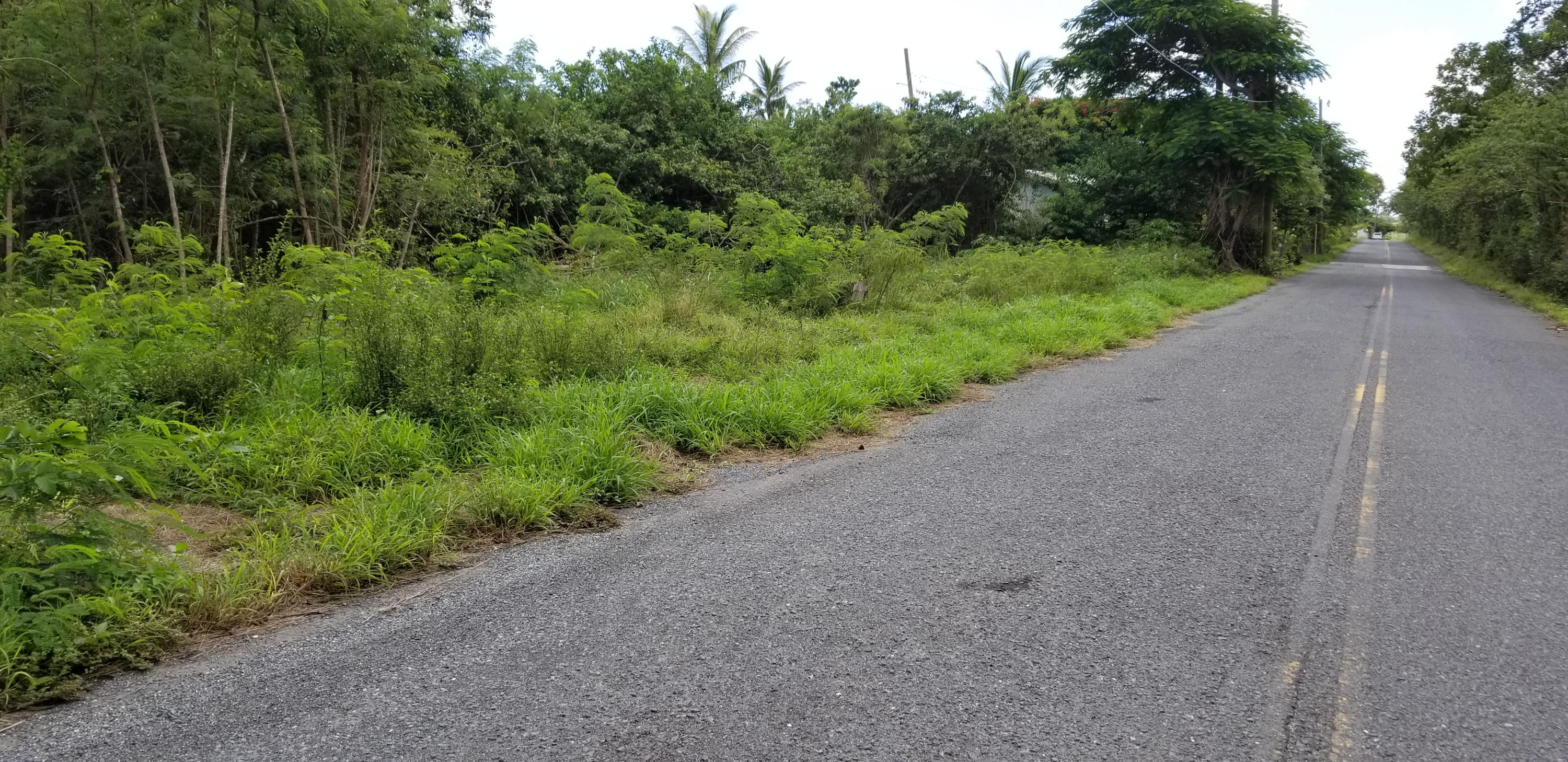 Land for Sale at 15-A Constitution Hill CO 15-A Constitution Hill CO St Croix, Virgin Islands 00820 United States Virgin Islands