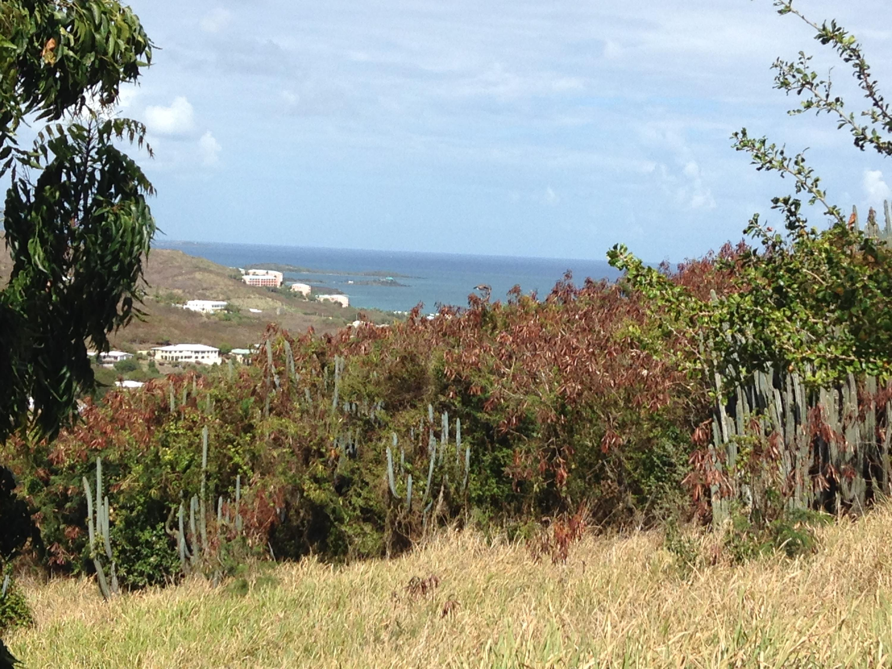Land for Sale at 226 Cotton Valley EB 226 Cotton Valley EB St Croix, Virgin Islands 00820 United States Virgin Islands