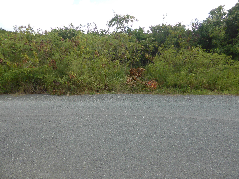 Land for Sale at 96 Mt. Pleasant EA 96 Mt. Pleasant EA St Croix, Virgin Islands 00820 United States Virgin Islands