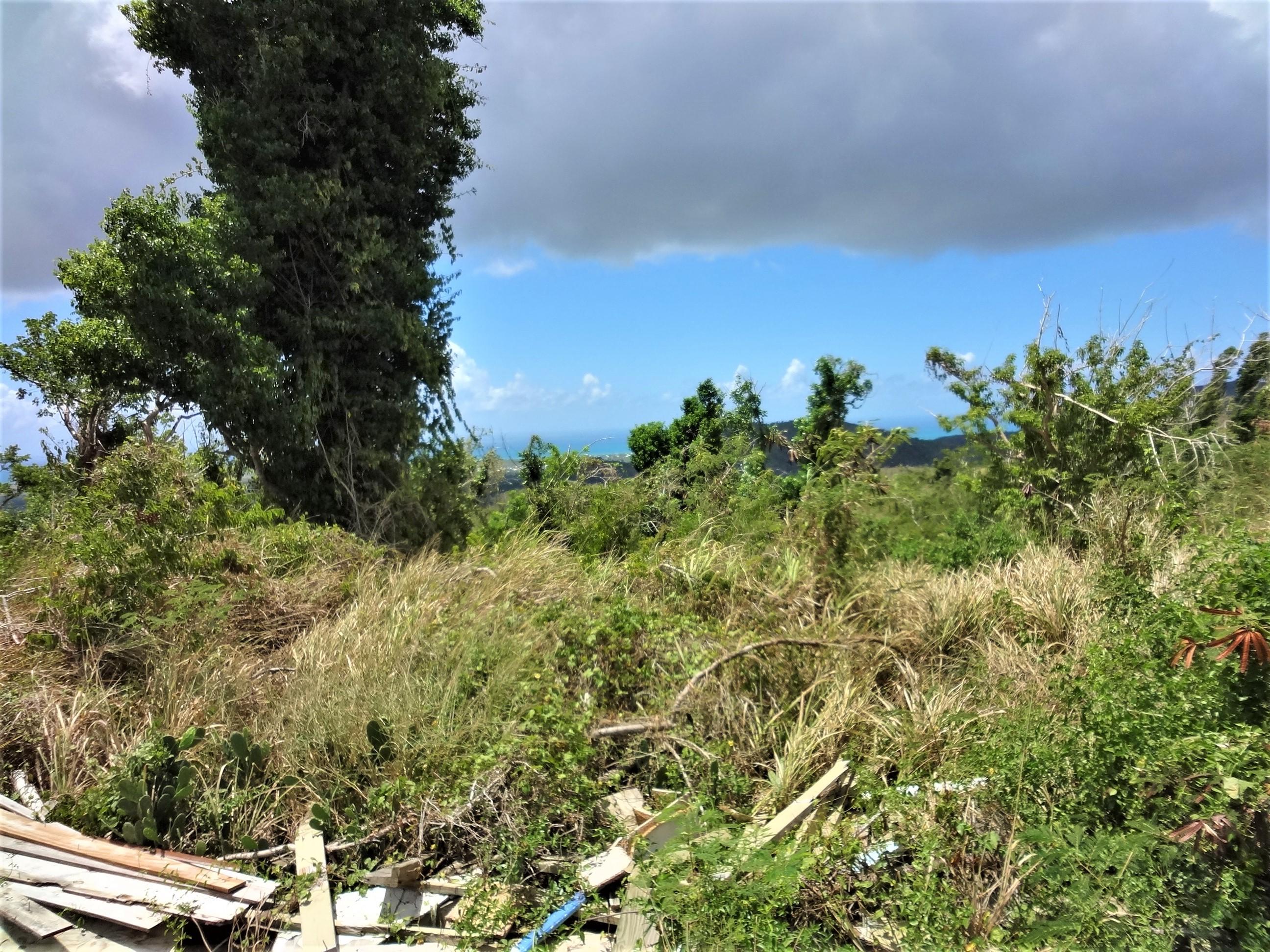 Land for Sale at 69 Hard Labor PR 69 Hard Labor PR St Croix, Virgin Islands 00850 United States Virgin Islands