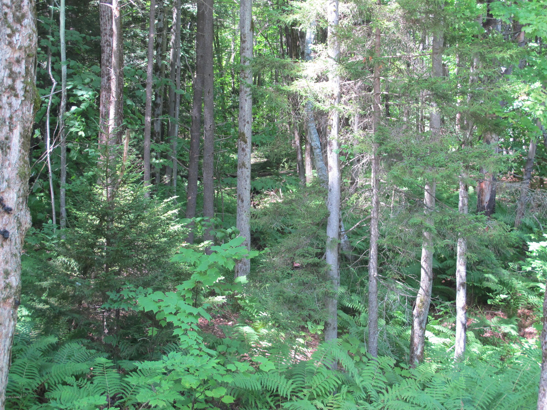 0 Valley Woods Road, Bolton NY 12814 photo 2