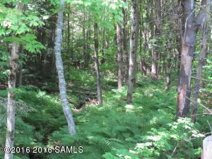 0 Valley Woods Road, Bolton NY 12814 photo 4
