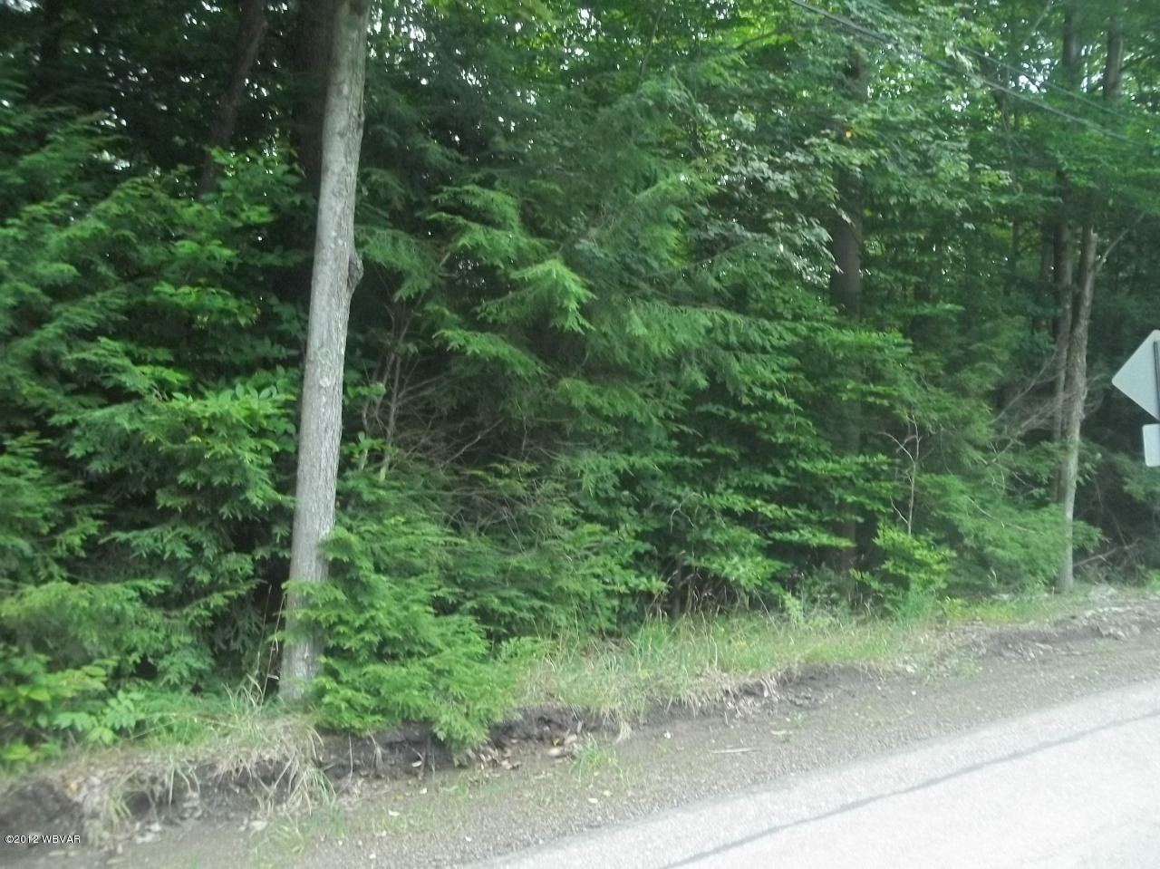 LOT 17` WOODED LANE, Laporte, PA 18626, ,Land,For sale,WOODED,WB-65304