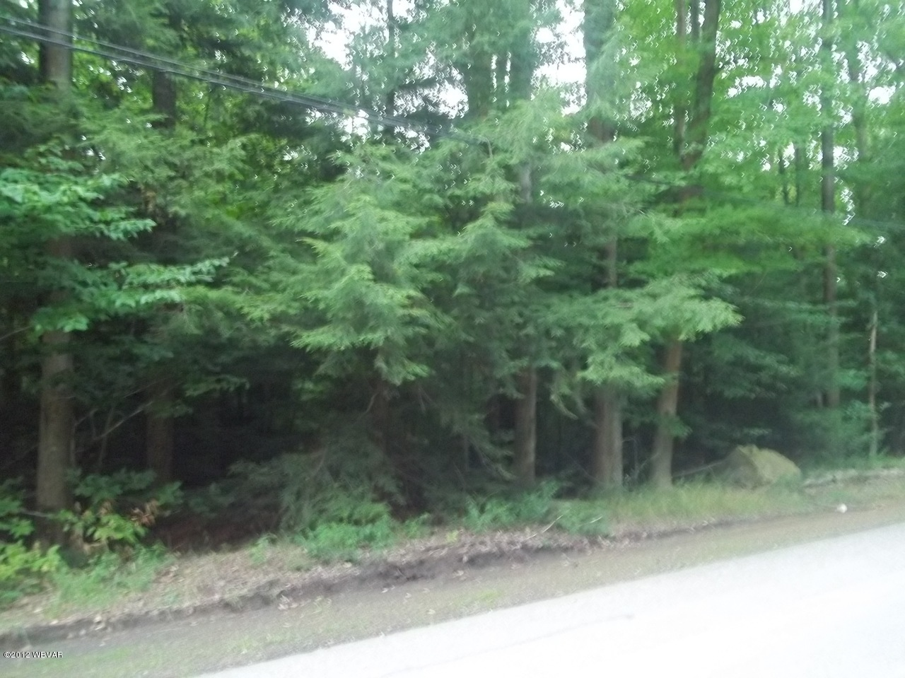 LOT 19 WOODED LANE, Laporte, PA 18626, ,Land,For sale,WOODED,WB-65305