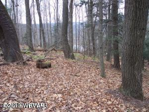 43 LAKESIDE DRIVE, Muncy Valley, PA 17758, ,Land,For sale,LAKESIDE,WB-67022