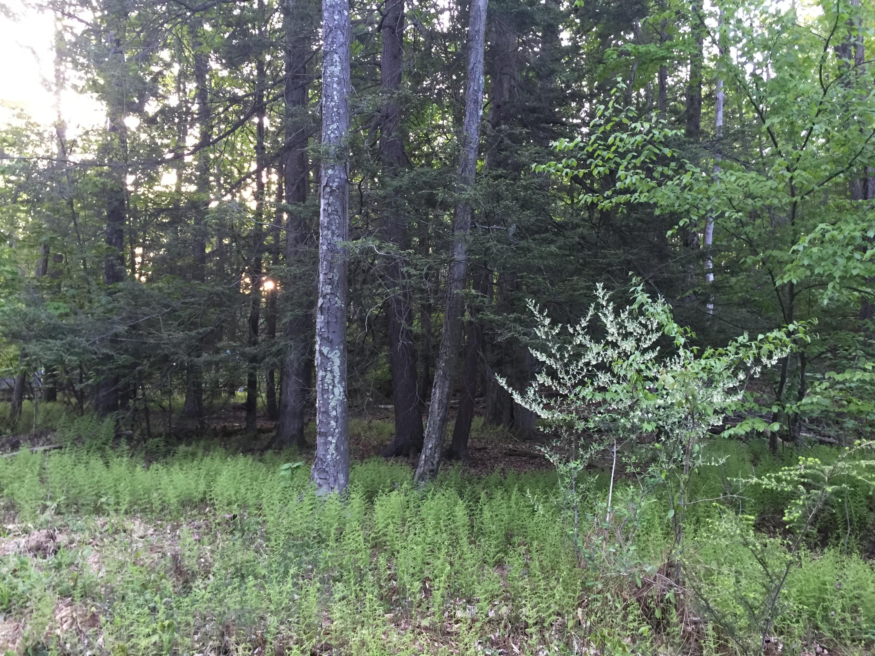 LOT 79 OAK LANE, Muncy Valley, PA 17758, ,Land,For sale,OAK,WB-76027