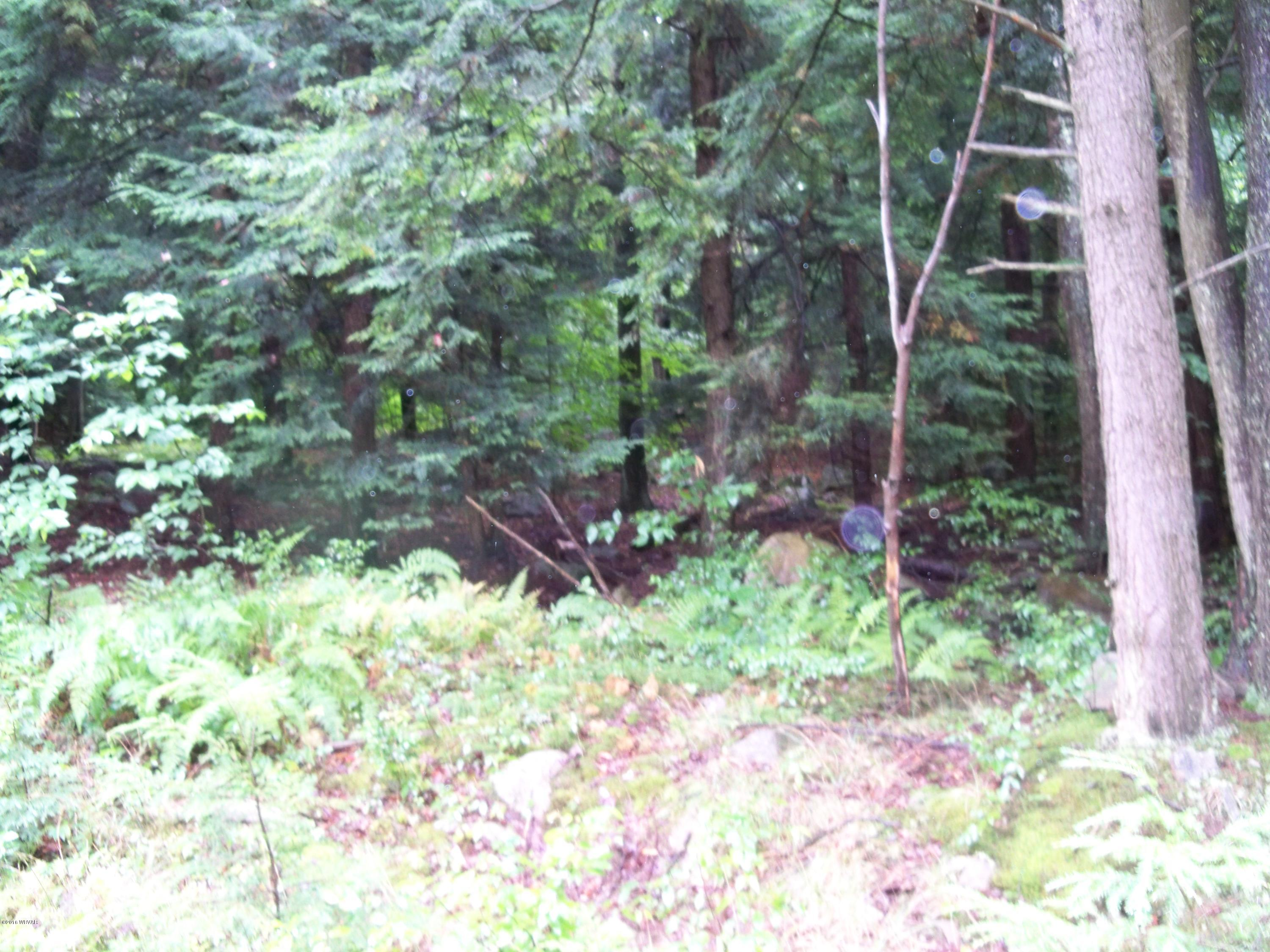LOT 29 HILARY LANE, Laporte, PA 18626, ,Land,For sale,HILARY,WB-77622