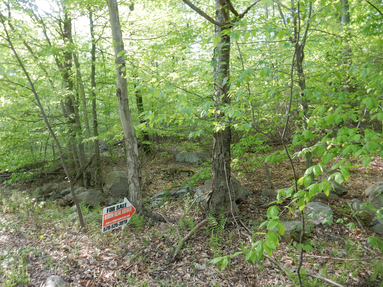LOT 29 HILARY LANE, Laporte, PA 18626, ,Land,For sale,HILARY,WB-77622