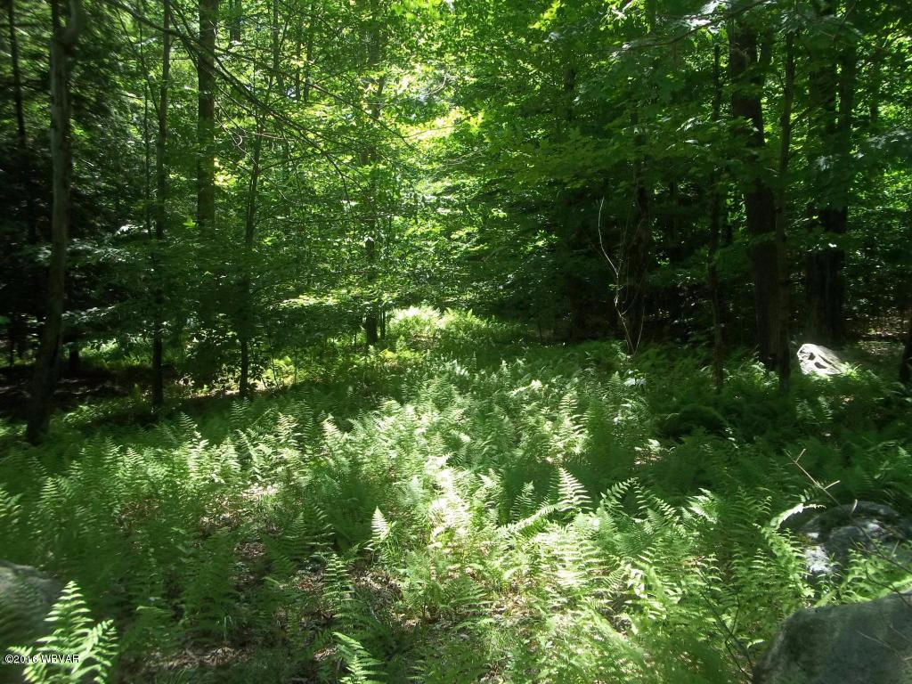 LOT 7 JAMES ROAD, Dushore, PA 18614, ,Land,For sale,JAMES,WB-77755