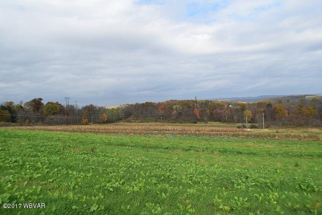 6 MUTCHLER ROAD, Danville, PA 17821, ,Land,For sale,MUTCHLER,WB-82528