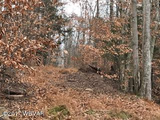 0 BROWN HILL ROAD, Muncy Valley, PA 17758, ,Land,For sale,BROWN HILL,WB-82749