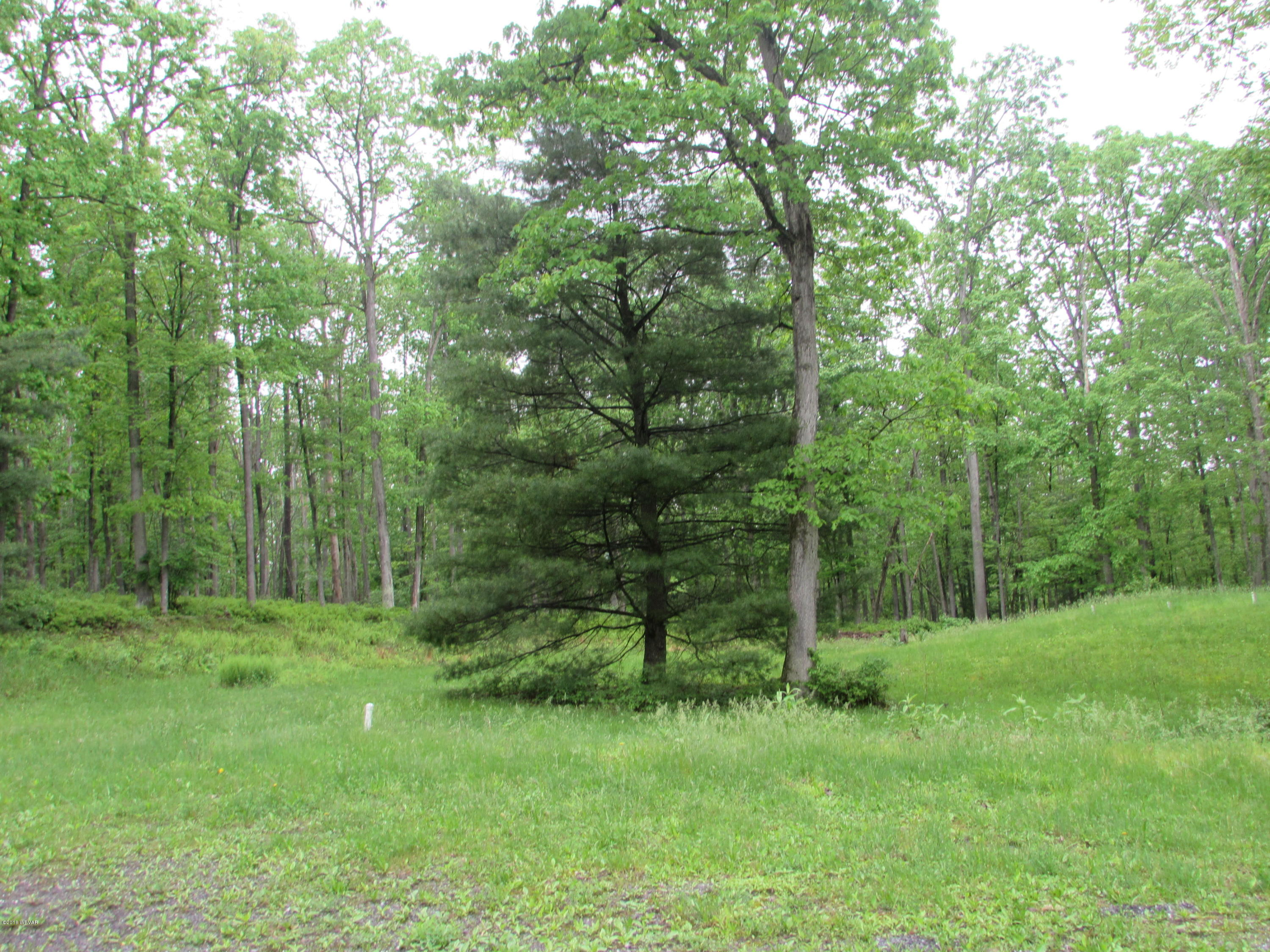 64 WHITE ROCK LANE, Mill Hall, PA 17751, ,Land,For sale,WHITE ROCK,WB-83102