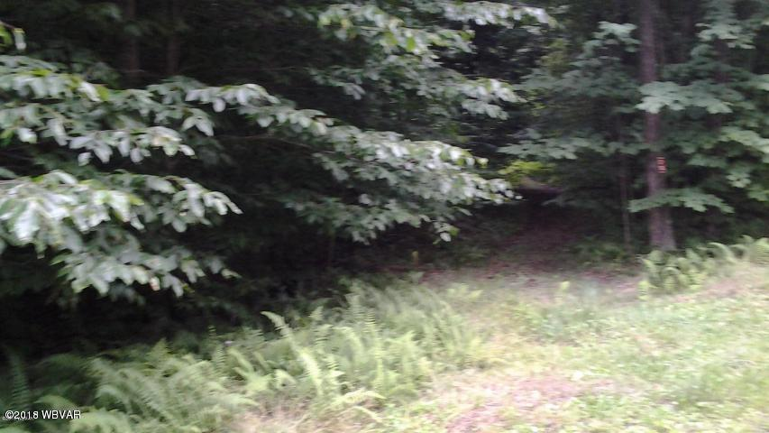 LOT 6 GROUSE WOODS DRIVE, Laporte, PA 18626, ,Land,For sale,GROUSE WOODS,WB-84222