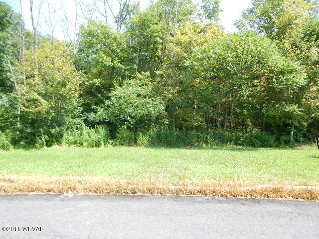LOT #29 HEARTLAND BOULEVARD, Elysburg, PA 17824, ,Land,For sale,HEARTLAND,WB-84982