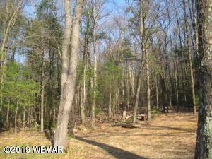 000 JAKE WENNER LANE,S. Williamsport,PA 17702,Land,JAKE WENNER,WB-86379