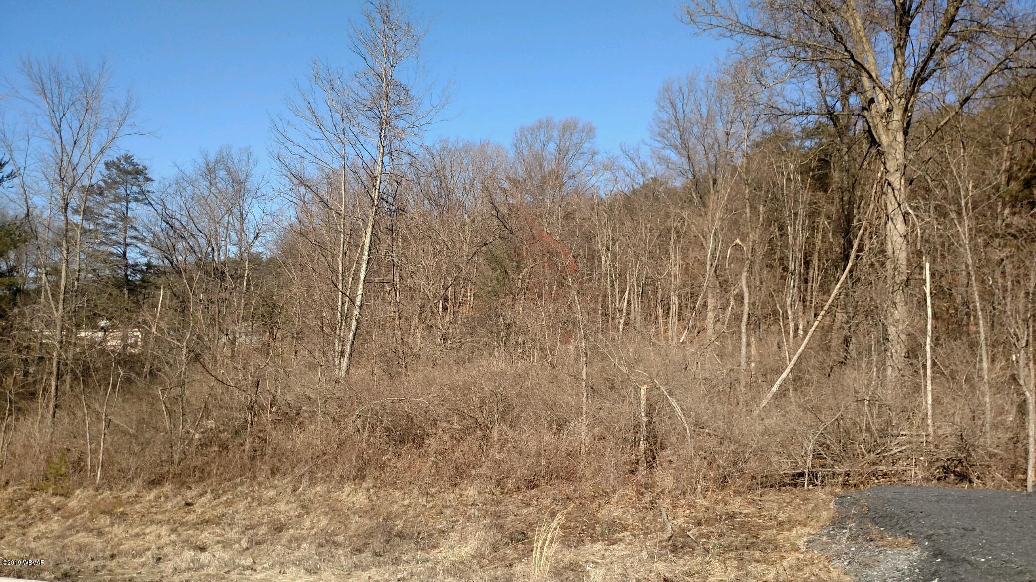 87 CREE DRIVE,Lock Haven,PA 17745,Land,CREE,WB-86398