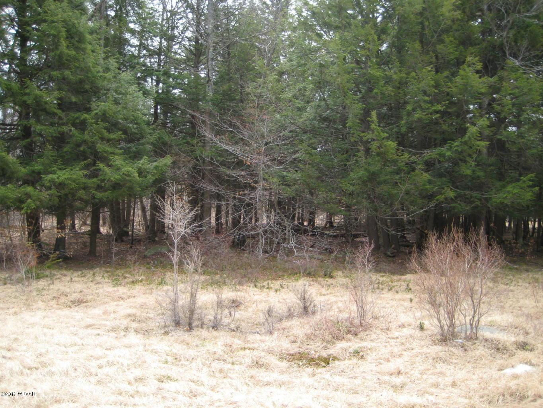 LOT 1 SANTEE LANE,Dushore,PA 18614,Land,SANTEE,WB-86646