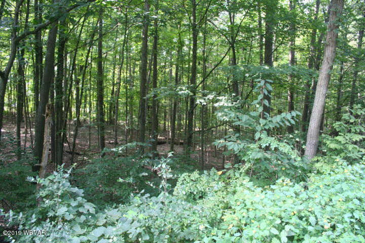 #3 SUSQUEHANNA TRAIL, Muncy, PA 17756, ,Land,For sale,SUSQUEHANNA,WB-86914