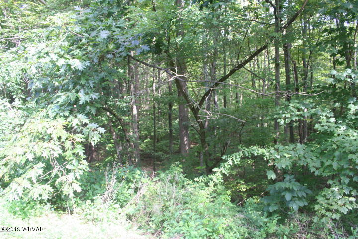 #5 SUSQUEHANNA TRAIL, Muncy, PA 17756, ,Land,For sale,SUSQUEHANNA,WB-86916