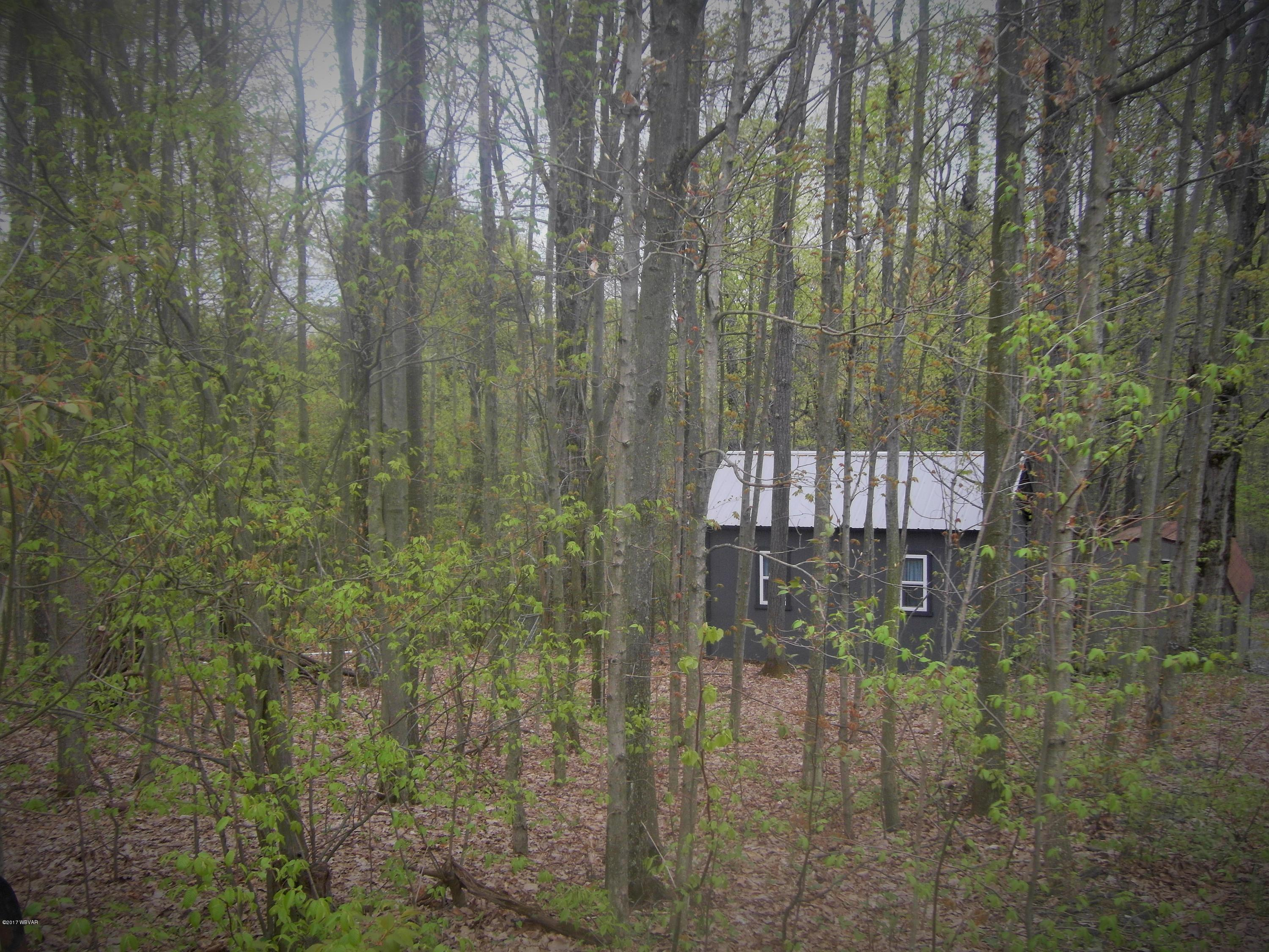 ELYS ROAD,Dushore,PA 18614,Cabin/vacation home,ELYS,WB-86956