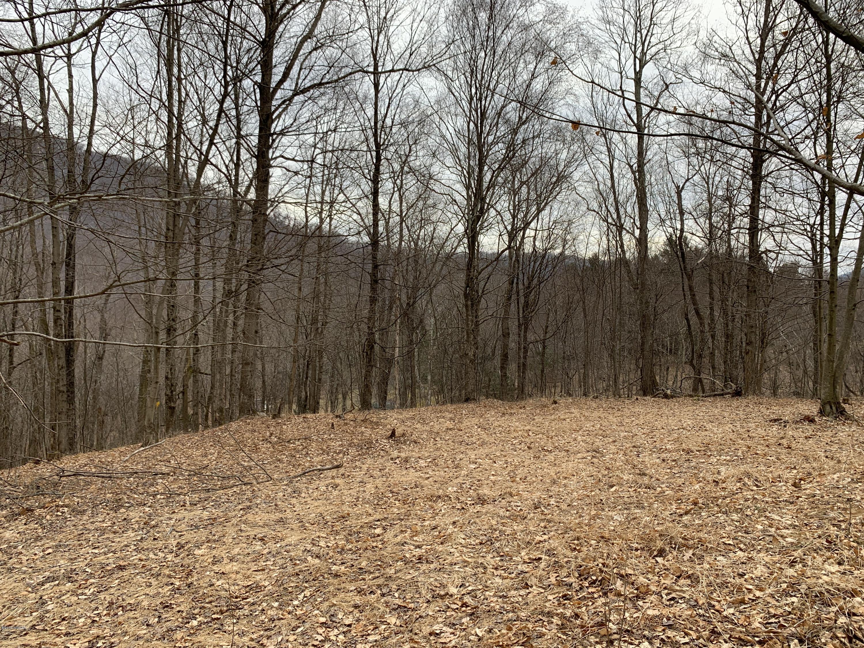 00000 SPORTSMAN LANE,North Bend,PA 17760,Land,SPORTSMAN,WB-86985