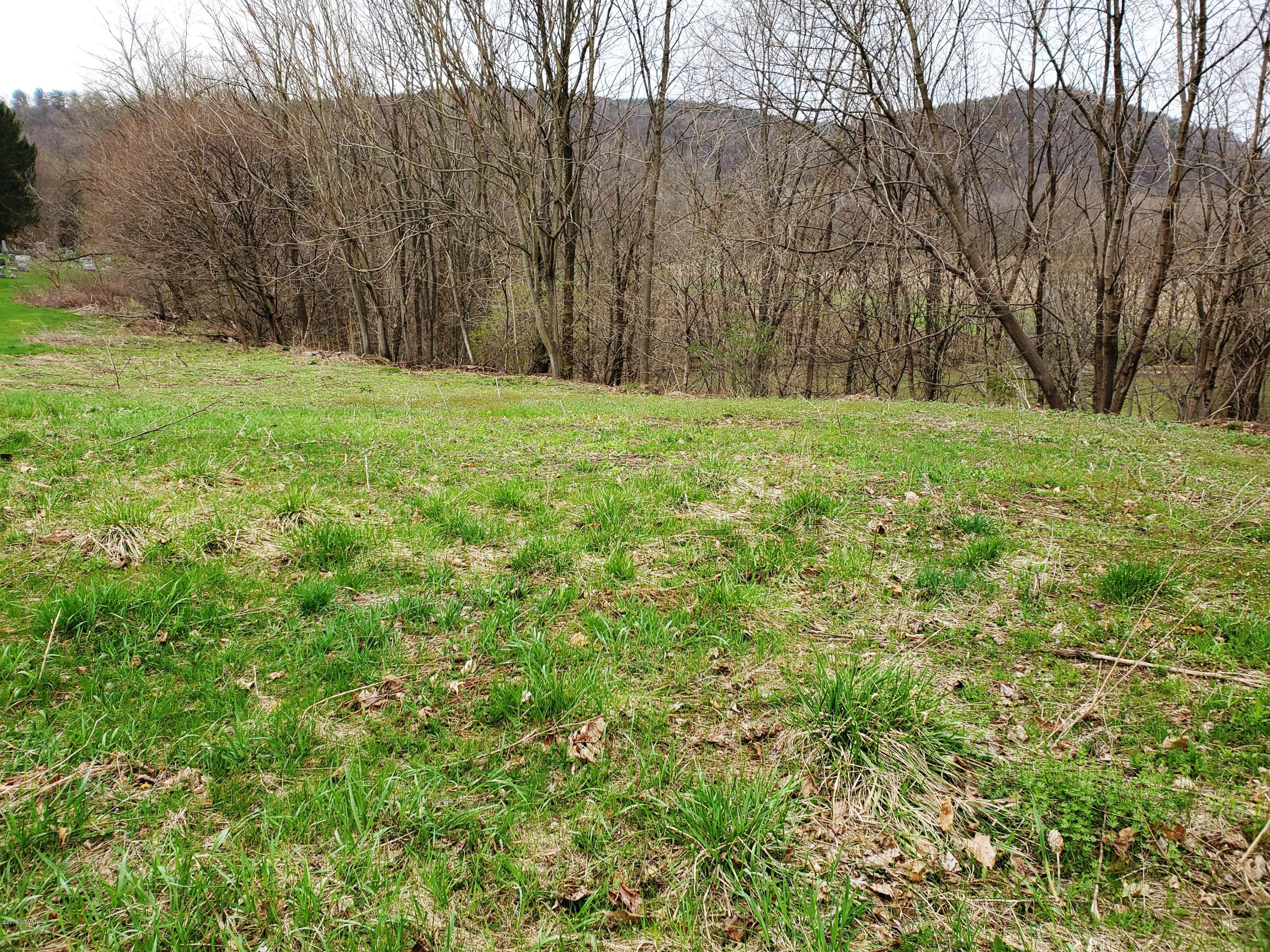 2329 ROUTE 87 HIGHWAY,Montoursville,PA 17754,Land,ROUTE 87,WB-87023