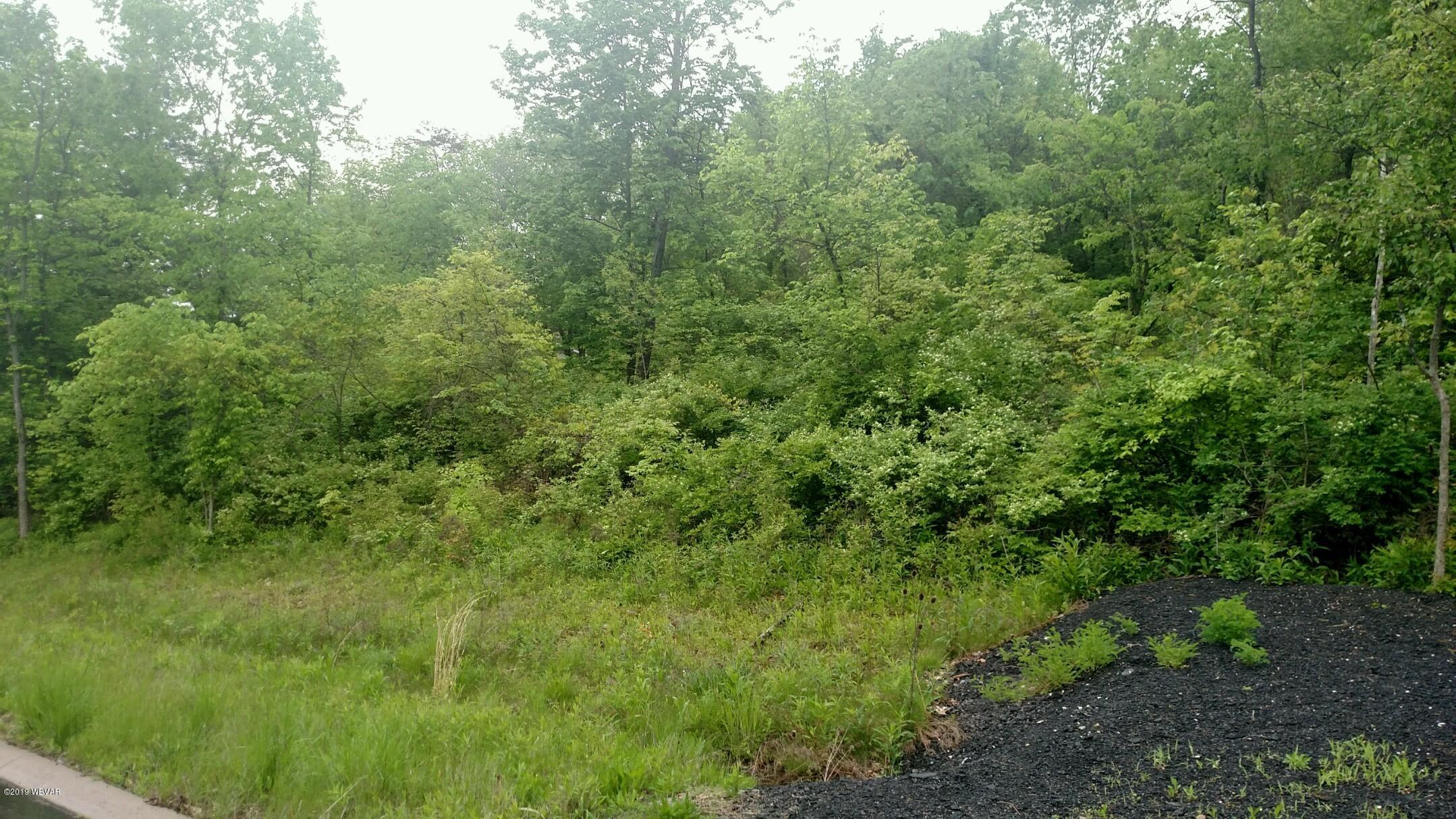 87 CREE DRIVE, Lock Haven, PA 17745, ,Land,For sale,CREE,WB-86398