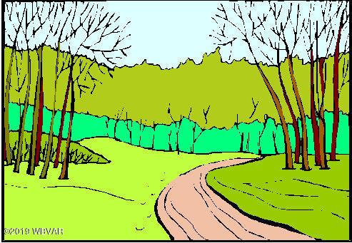 WALLIS RUN ROAD,Trout Run,PA 17771,Land,WALLIS RUN,WB-88524