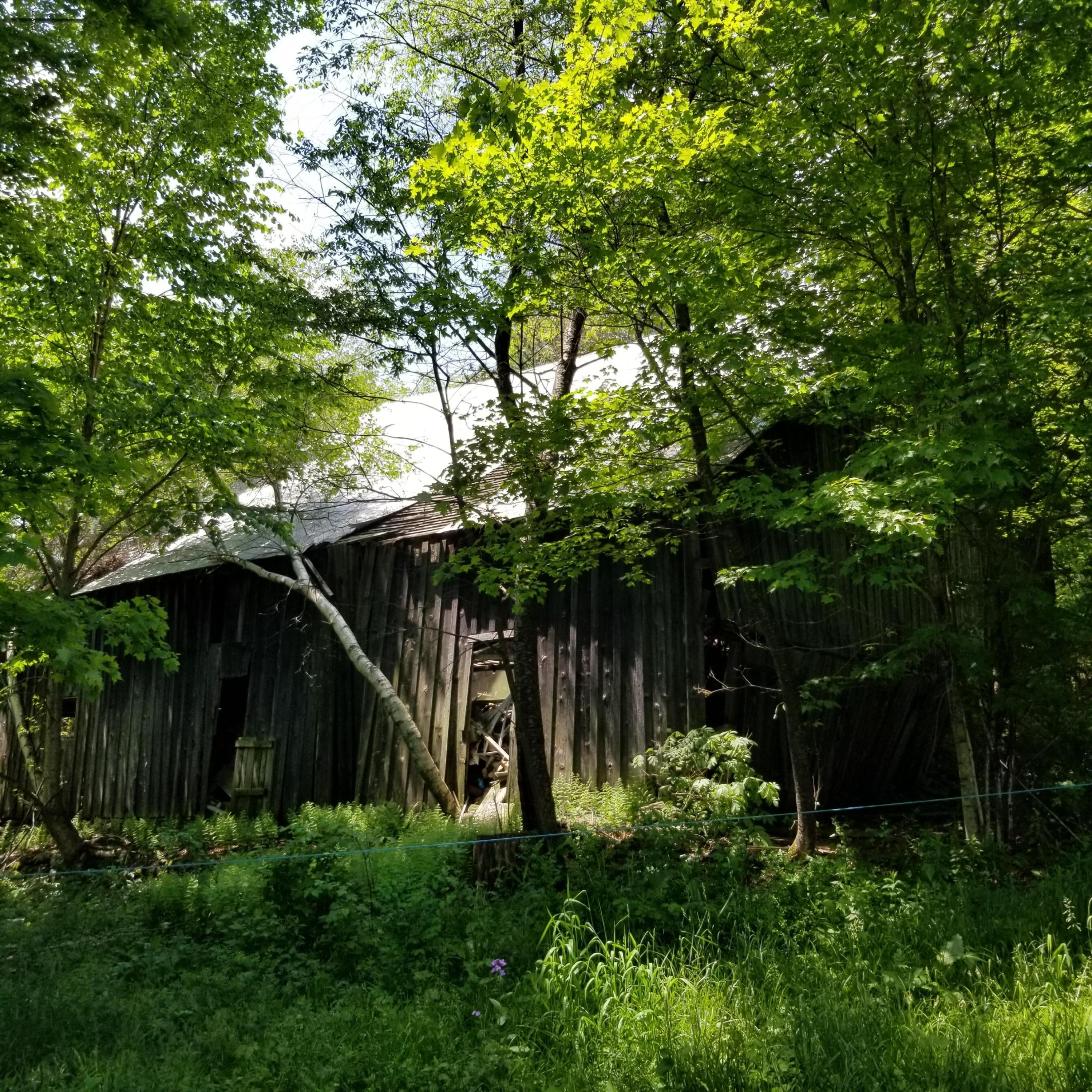 549 MILLVIEW MOUNTAIN ROAD,Forksville,PA 18616,Land,MILLVIEW MOUNTAIN,WB-88759