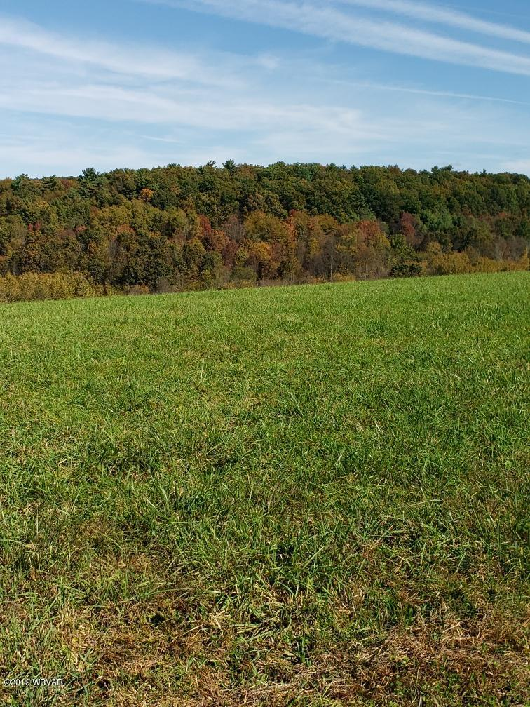 MT ZION HILL ROAD,Hughesville,PA 17737,Land,MT ZION HILL,WB-88831