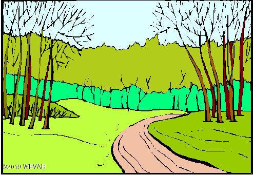 WOODWARD AVENUE, Avis, PA 17721, ,Land,For sale,WOODWARD,WB-89250