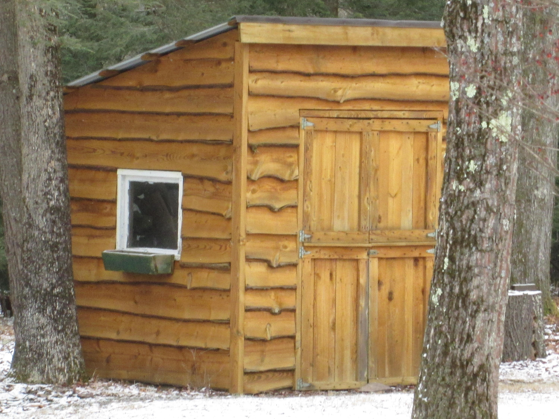 294 WHITEDEER ROAD,Loganton,PA 17747,3 Bedrooms Bedrooms,3 BathroomsBathrooms,Residential,WHITEDEER,WB-89364